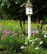 ... green-look-landscape-with-cool-birdhouse-designs-that-you-looking-for