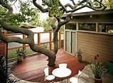 im genes de jardines interiores jard n y terrazas