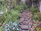 stone garden pathway gardening things i like pinterest