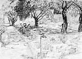 Drawing a garden - Garden drawing - Vegetable Garden Drawing | Home HD ...
