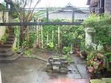 Balcony Garden Ideas Pictures, Balcony Garden Dreaming: Help Cecilia ...