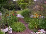landscaping ideas my memory garden yardshare com