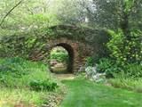 Woodland garden ideas | Woodland garden | Pinterest
