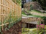 bamboo trellis | garden ideas | Pinterest