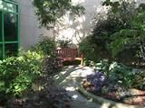 unusual garden ideas 2144