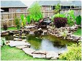 Pond ideas (2)