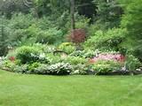 Woodland Garden Fencing Ideas: 21 Astounding Woodland Garden Ideas ...
