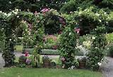 love the arches with the climbing roses | Garden Ideas | Pinterest