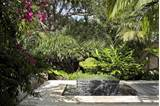 Tropical Garden and Landscape Design | modern design by moderndesign ...