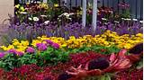 flower bed design landscaping designs and ideas pinterest