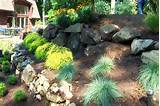 Rock Landscaping Ideas | Garden | Pinterest