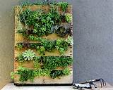 Photos Indoor Herb Garden Ideas: 20 Terrific Indoor Garden Ideas ...