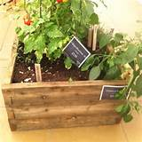 raised bed garden ideas pinterest
