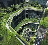 toit végétal, toitures à étages végétalisées