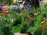 cottage flower garden ideas garden wishes pinterest