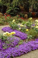 ... rock garden addition (Perennial) | Gardening Ideas & Tips | Pinterest