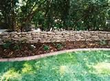 need privacy diy garden privacy ideas the garden glove home and