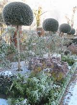 winter garden | Ideas for the garden | Pinterest
