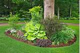 Hosta Happiness - Lowes Creative Ideas perfect for the front corner