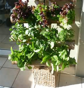 Products > Vertical Gardens > Hydroponic Vertical Garden