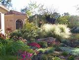 Oman landScape: Home landscaping designs in san diego