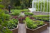 decorative DIY raised beds vegetable garden wood planks home garden ...