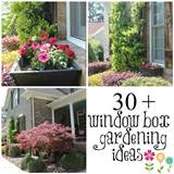 file name 30 window box gardening ideas jpg resolution 2000 x