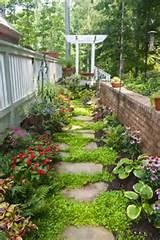 Secret garden!