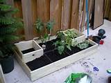 garden box design ideas small garden box fortikur