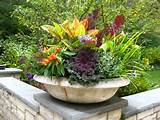 Fall Flowers Wahkeena... MUST DO THIS