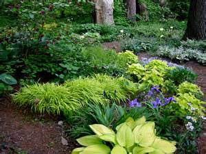 woodland garden on pinterest shade plants hosta gardens and