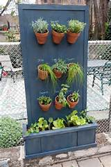 diy-herb-garden-vertical-herb-garden-from-brooklyn-limestone