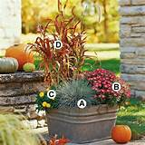 container gardens ideas container gardens fall containers fall