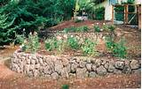 rock wall garden ideas
