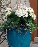 ... Gardens Can, Flower Design, Style, Gardens Helpful, Gardens Articles