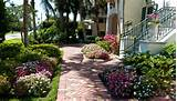 Whinter: Useful Beach house landscaping ideas