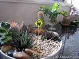 Indoor garden :: cactus garden idea | Miniature Gardens | Pinterest