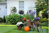 fall garden | National Association of professional Child Photographers