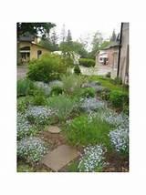 Garden Design Ideas Sunny | Landscape | Pinterest