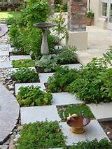 herb garden design ideas pinterest