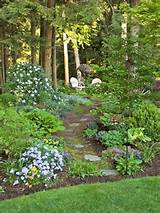 shade garden for backyard gardening pinterest