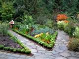 Gardener in a Forest: Potager Inspiration for Your Garden