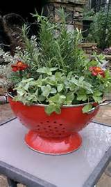 herbs gardens cool ideas small gardens hostess gift flowerpot