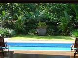 hortulus landscape design construction formal tropical garden