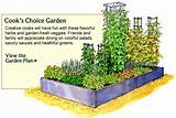 Vegetable Garden Planner - Layout, Design, Plans for Small Home ...