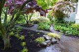 shade garden | Erin Lau Design | Seattle, Burien, Renton Landscape and ...