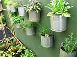vertical gardening inspiration