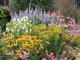 High Country Gardens Summer Dreams is a pre-planned garden that ...