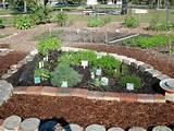 herb garden | Gardens & Outdoor Living | Pinterest