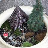 fairy garden expand and furnish